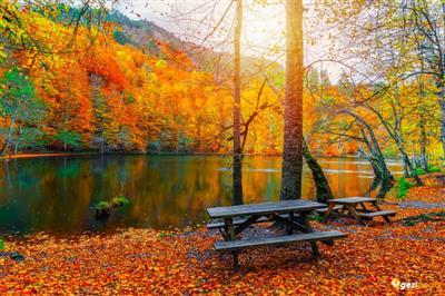 Günübirlik Yedigöller Maşukiye Doğa&Terapi Turu