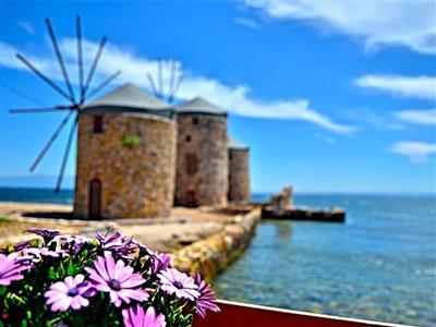 Ege'nin Mavi Bayraklı Plajlarında Yüzme Turu